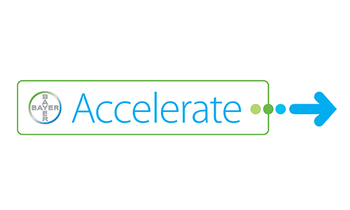 Bayer Accelerate