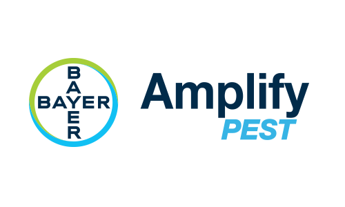 Bayer Amplify Pest