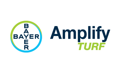 Bayer Amplify Turf